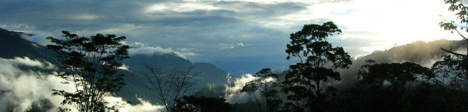 Mining Conflict in Cordillera del Cóndor | Acción Ecológica, Ecuador
