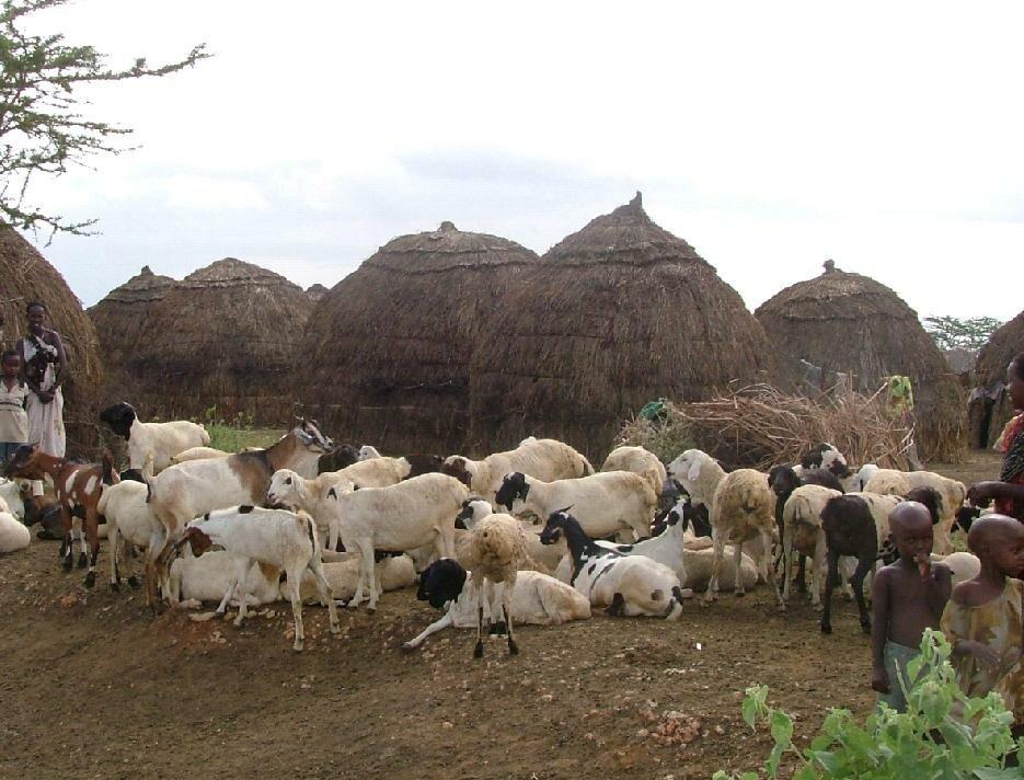 UAB_village
